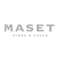 partners-logo-maset